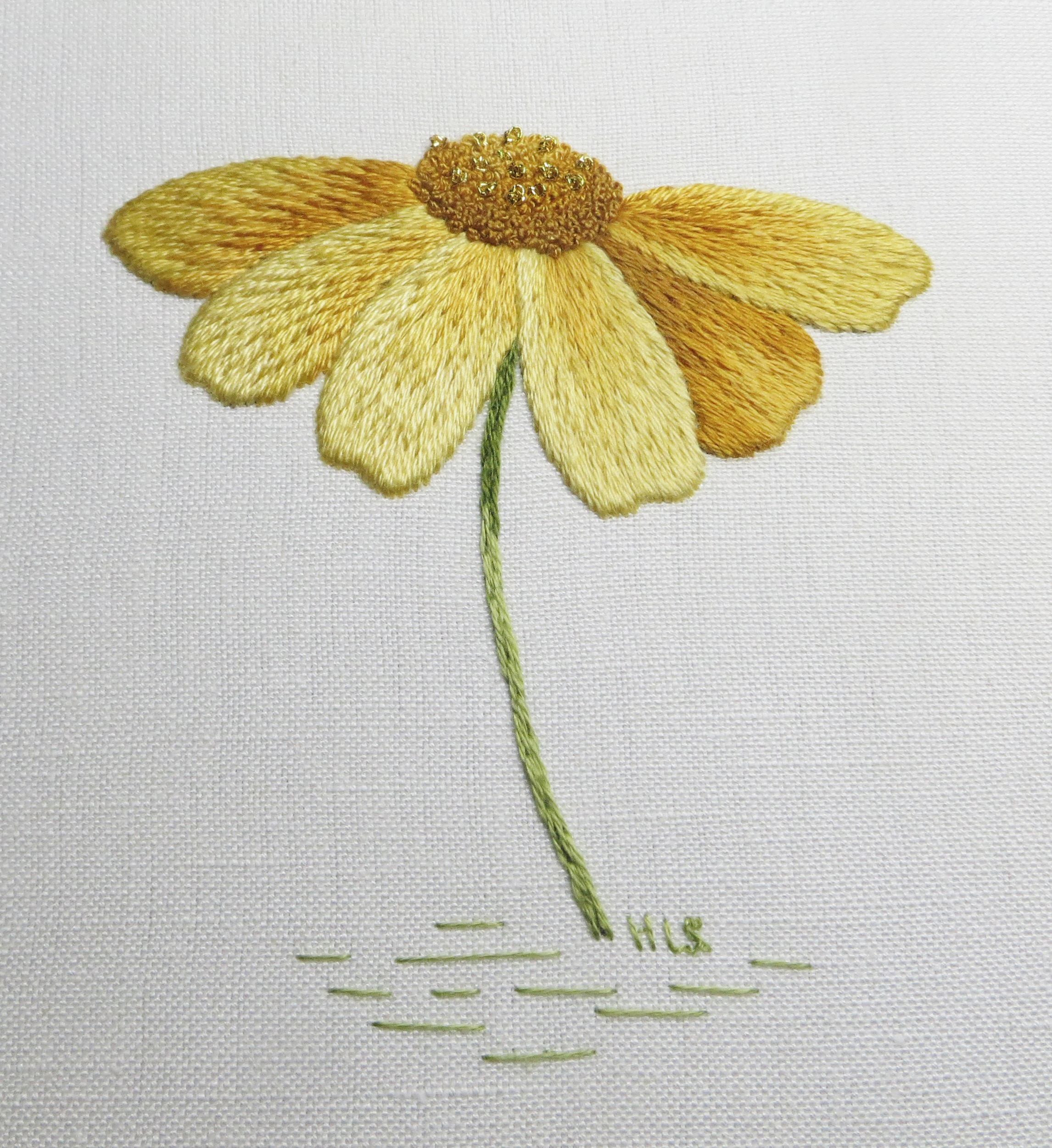 Silk-shaded Daisy from the RSN class