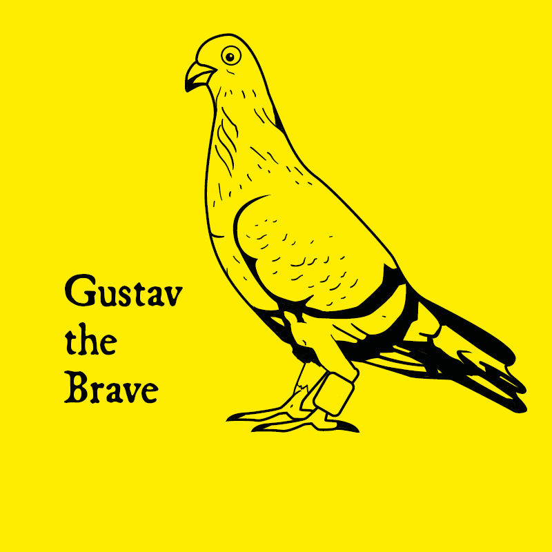 Gustav the pigeon's secret codes and rhymes