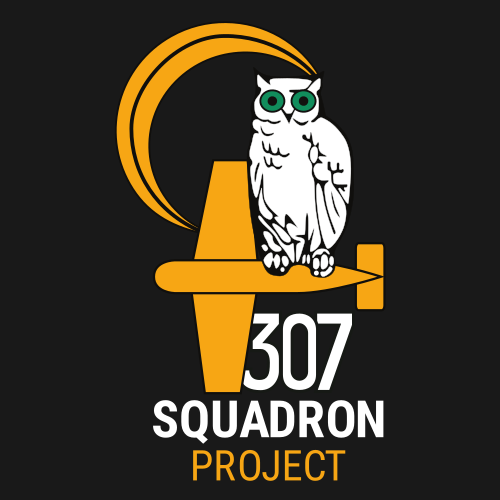 Logo for the 307 Squadron Project